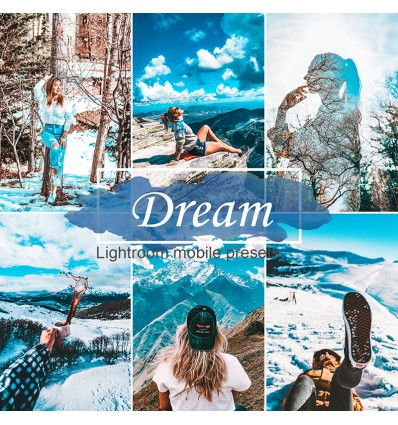 Mobile Lightroom Preset - Dreams